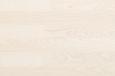 508504 Ясень Селект Sydney, белый лак
