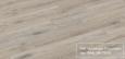Дуб Білений Титан R 1214